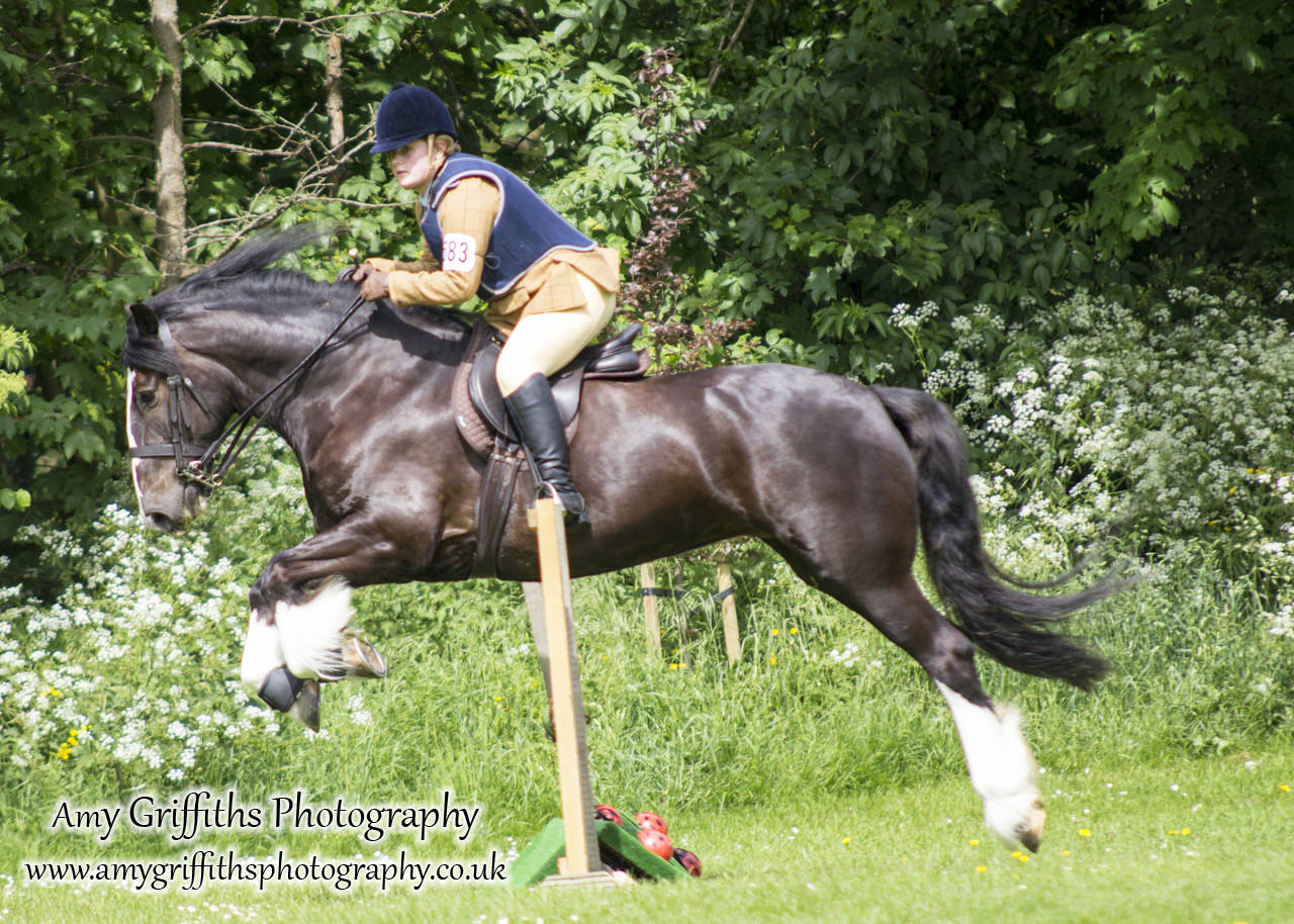 Hornsea Horse and Dog Show Day 2- Amy Griffiths Photography
