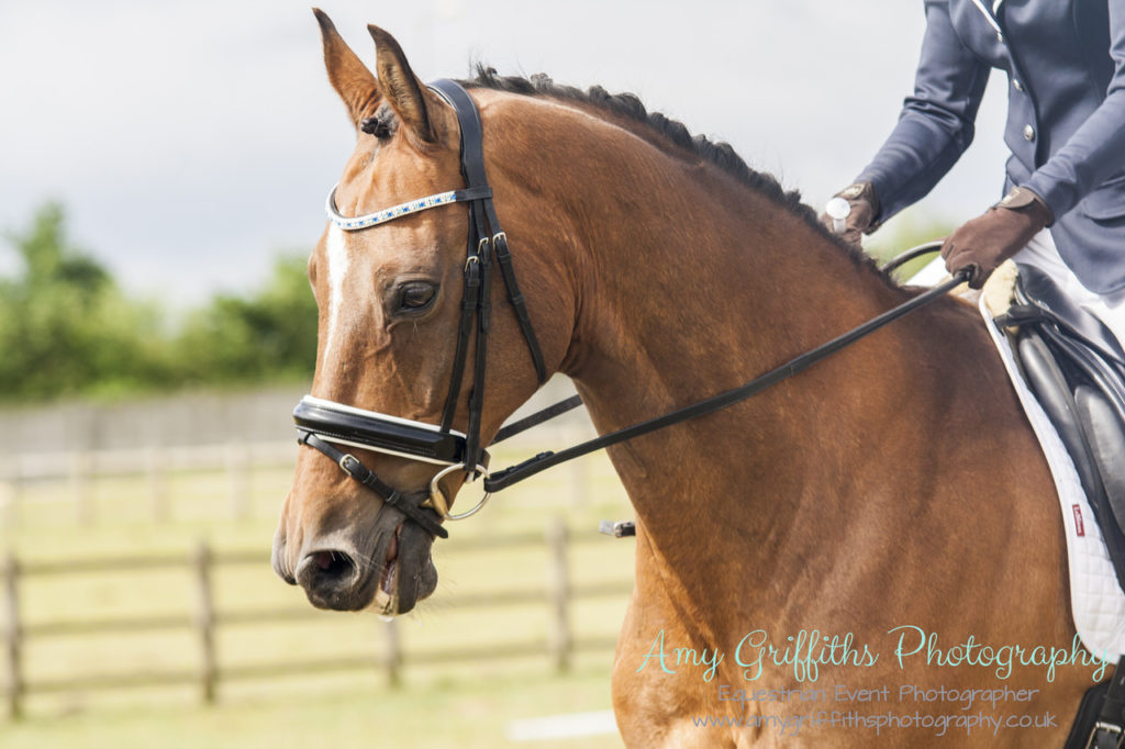 Mill Lane Stables Mini ODE- Amy Griffiths Photography