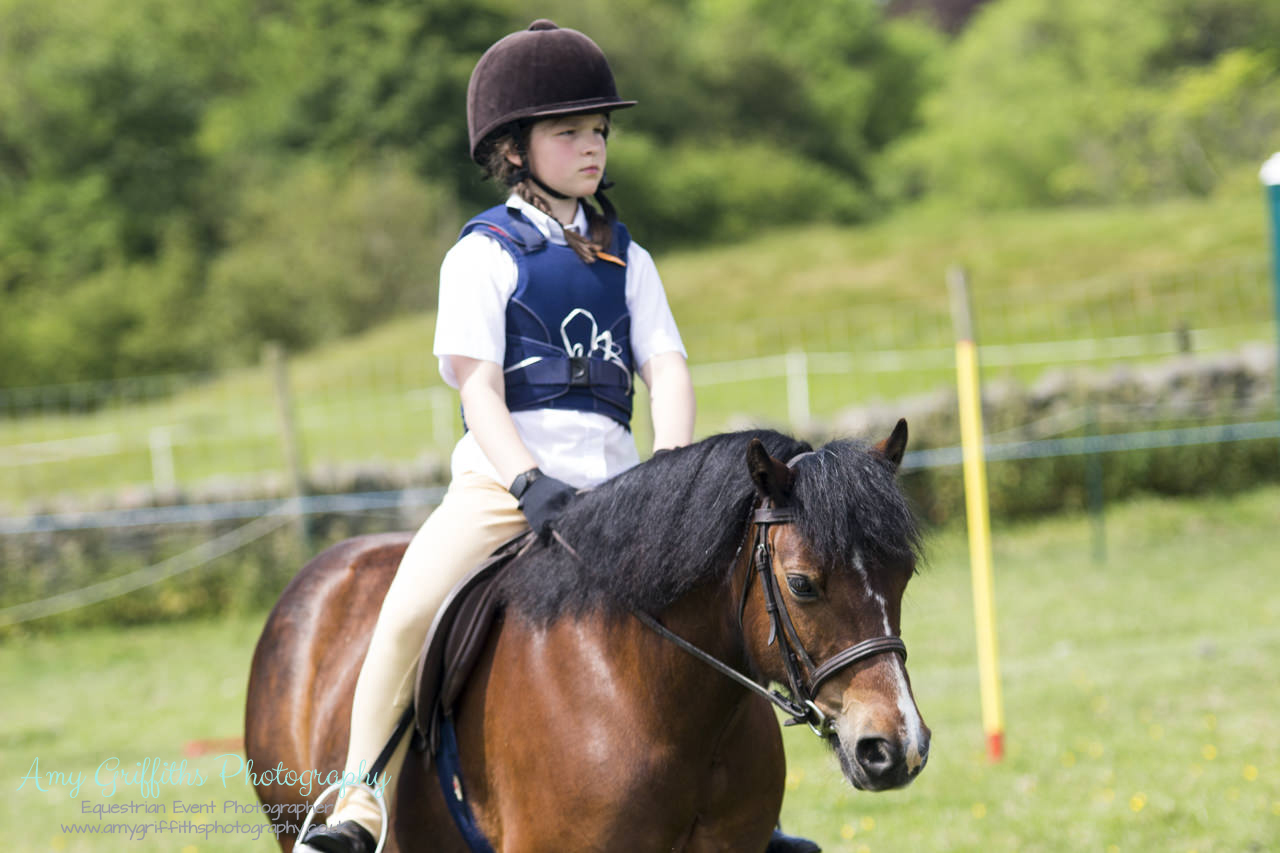 Askwith Show 2017- Amy Griffiths Photography- Equestrian Event Photographer