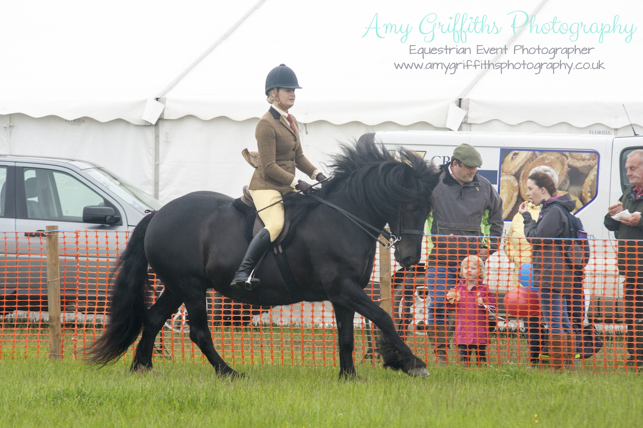 Honley Show 2017 - Amy Griffiths Photography -Equestrian Event Photographer