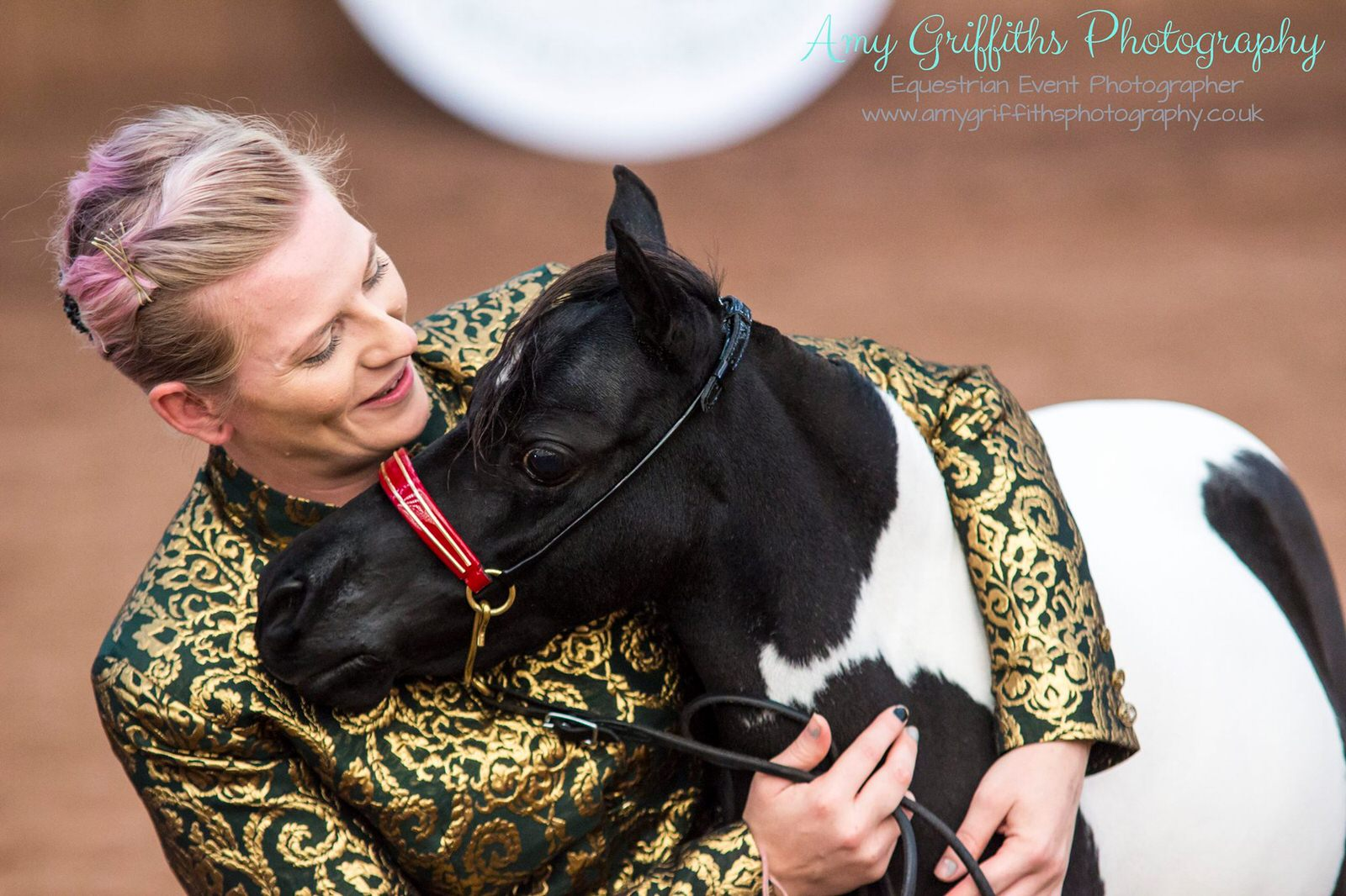 Miniature Horse Club of Great Britain - Amy Griffiths Equestrian Event Photography