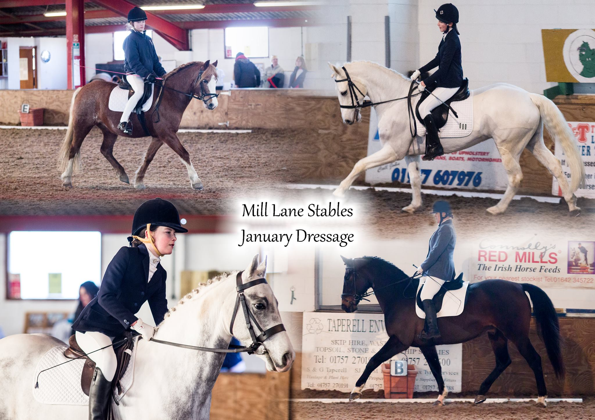 Mill Lane Stables Dressage
