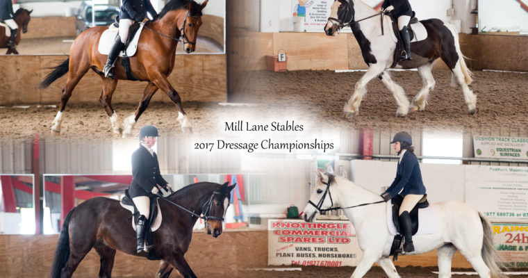 Mill Lane Stables 2017 Dressage Championships