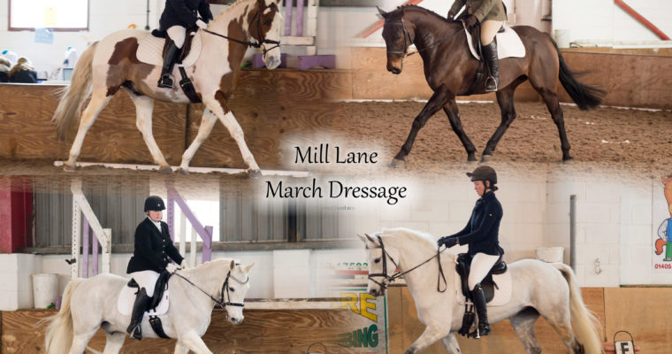 Mill Lane March Dressage
