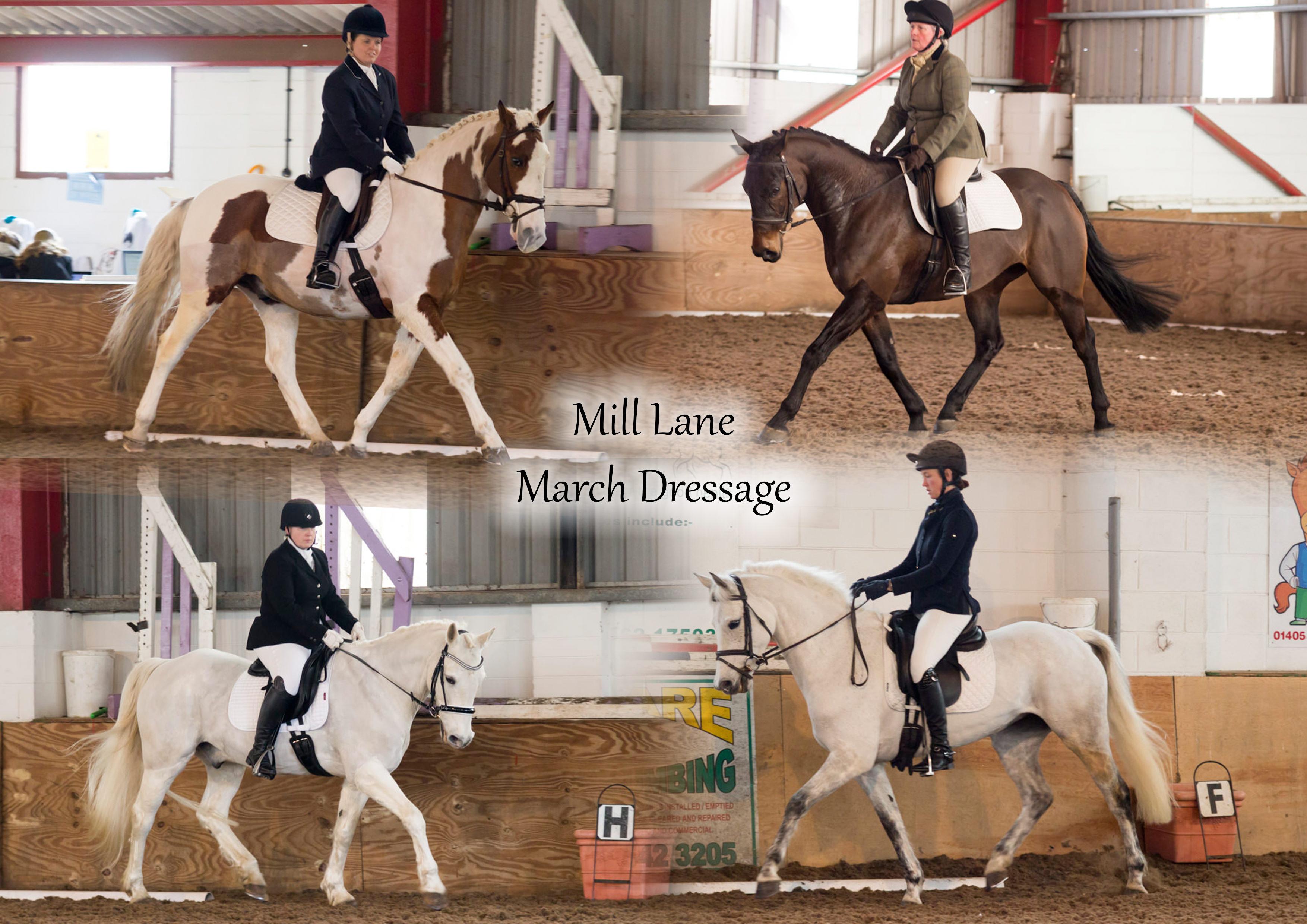 Mill Lane March Dressage