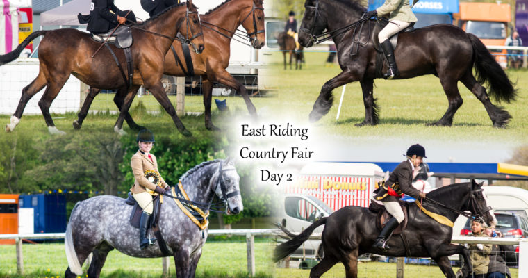 East Riding Country Fair- Day 2
