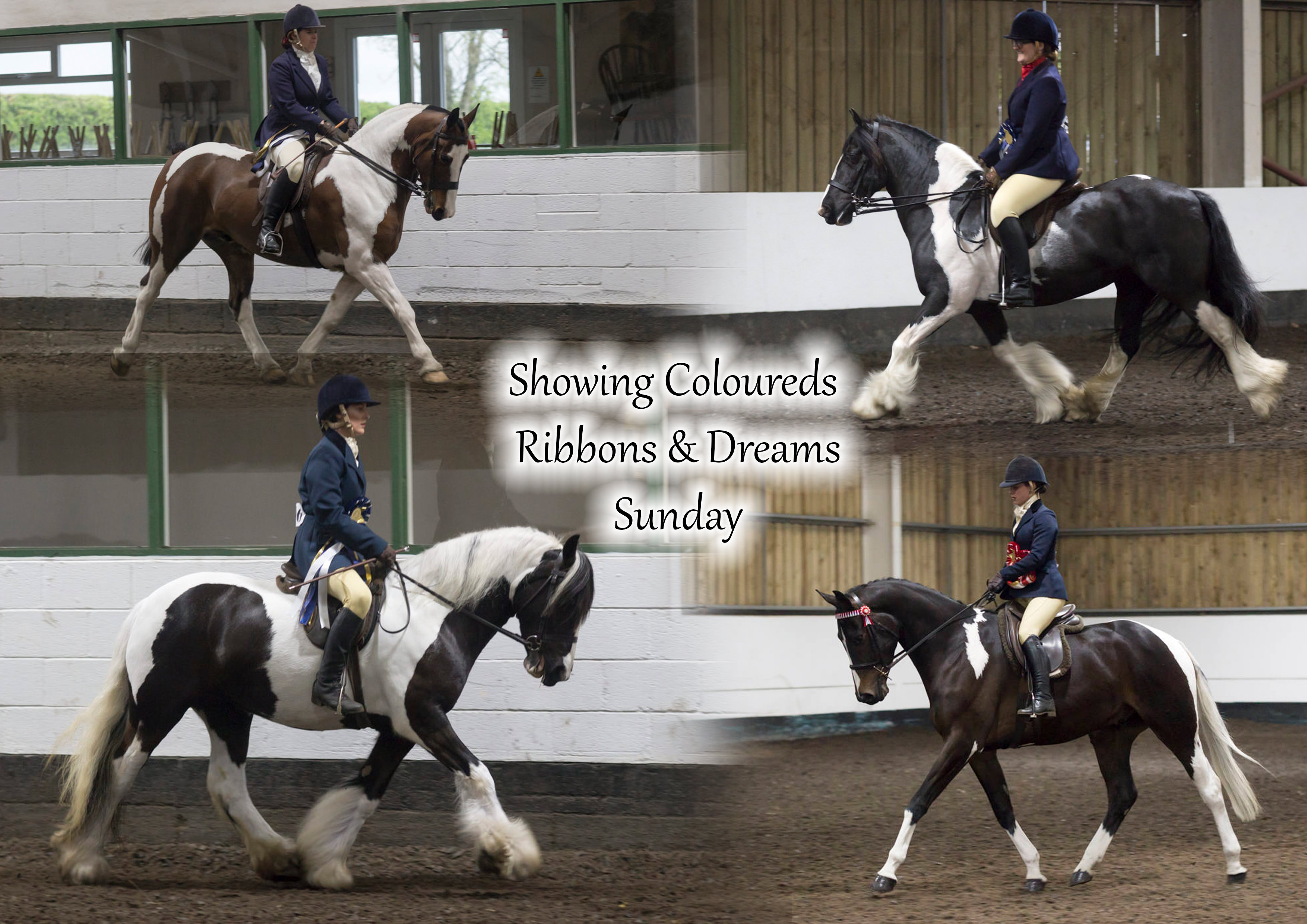 Showing Coloureds Ribbons & Dreams Show