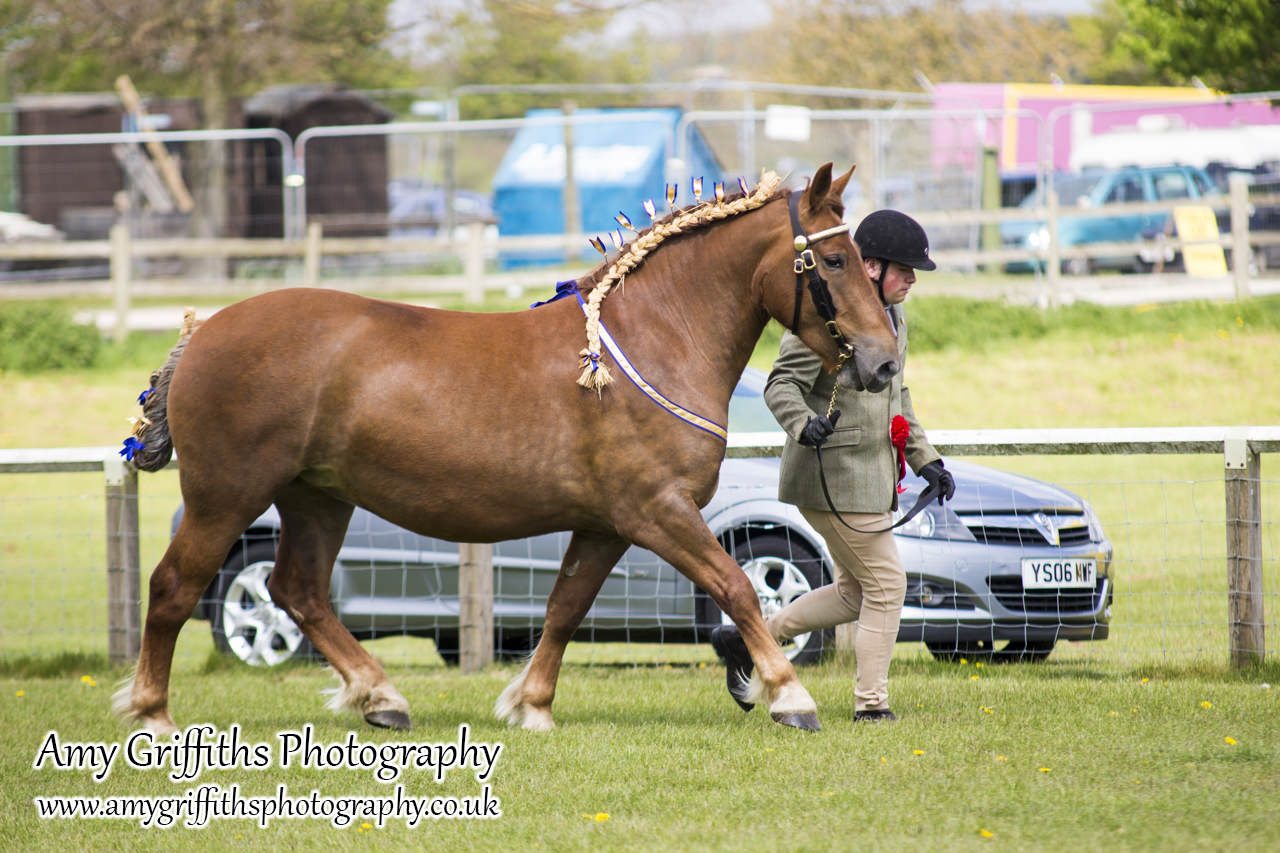 East Riding Country Fair- Day 1