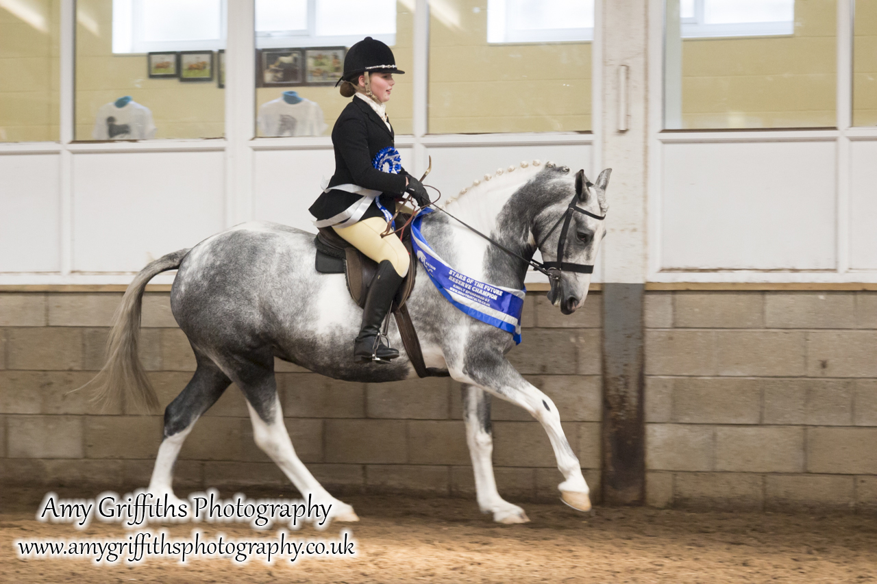 Amateur of the Year Show 2017 Day 2 Ridden- Amy Griffiths Photography