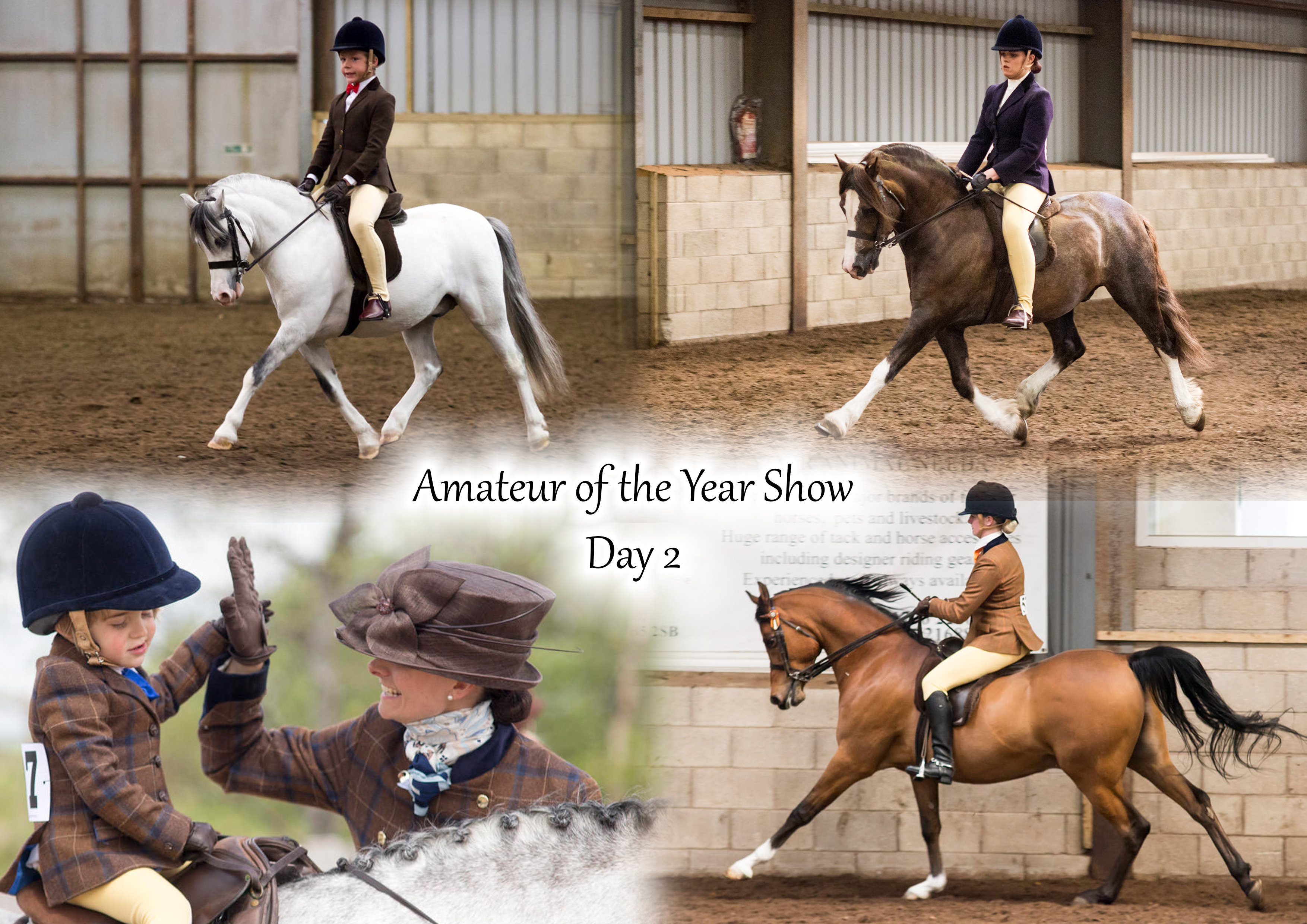 Amateur of the Year Show- Day 2