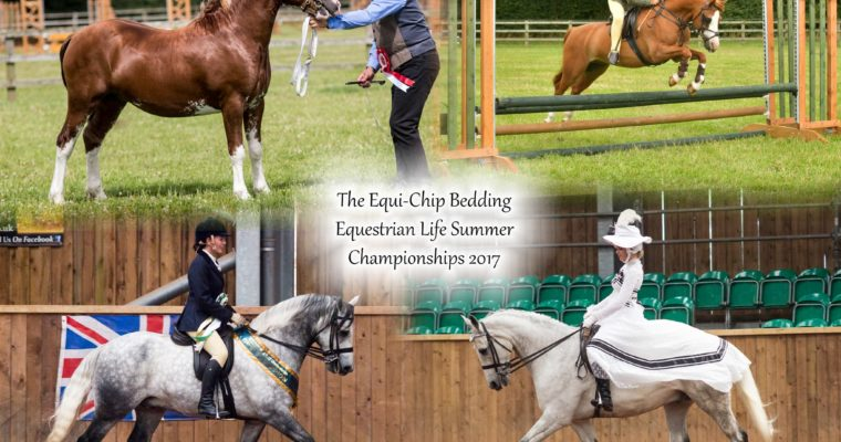 Equestrian Life Championships Friday