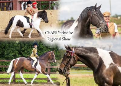 CHAPS Yorkshire Regional Show