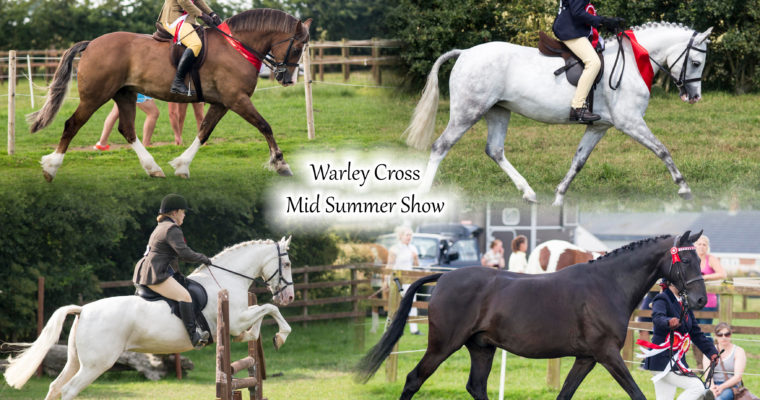 Warley Cross Stables Mid Summer Show