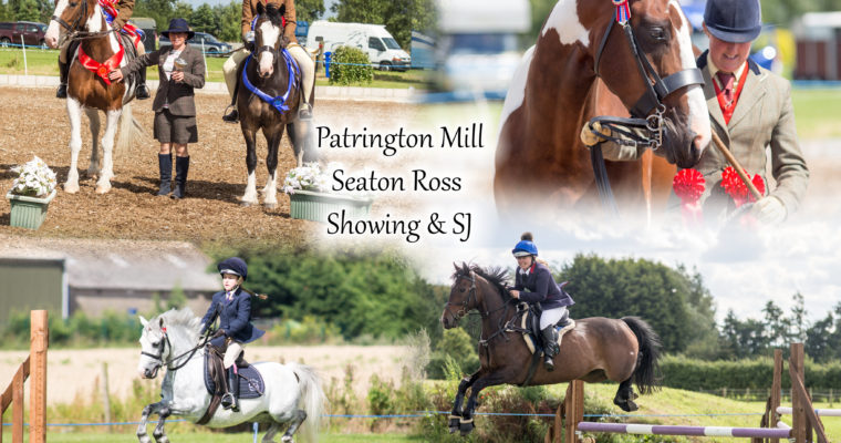 Patrington Mill Showing Show & Showjumping- Rose Thorpe Park