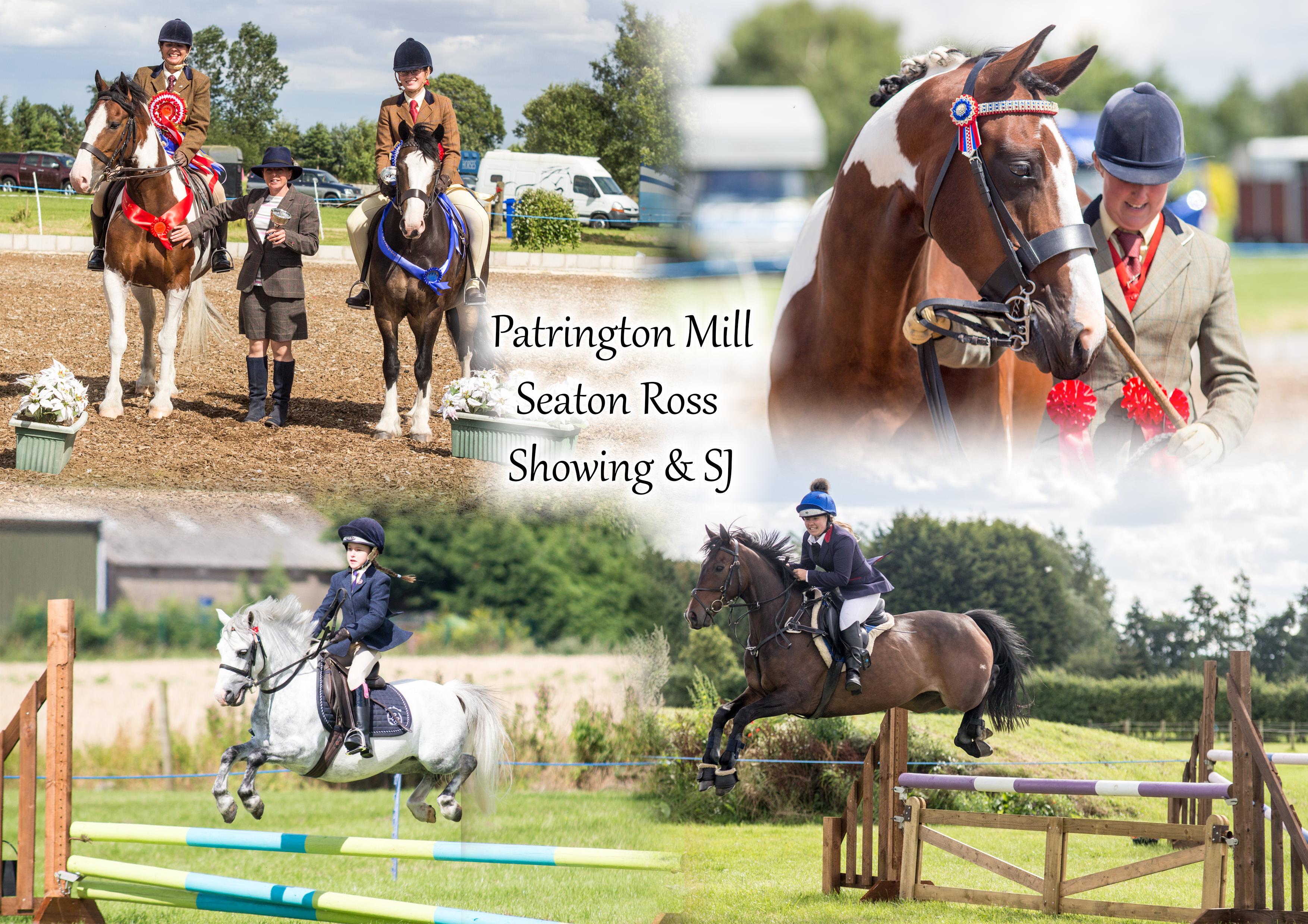 Patrington Mill Showing Show & Showjumping- Rose Thorpe Park