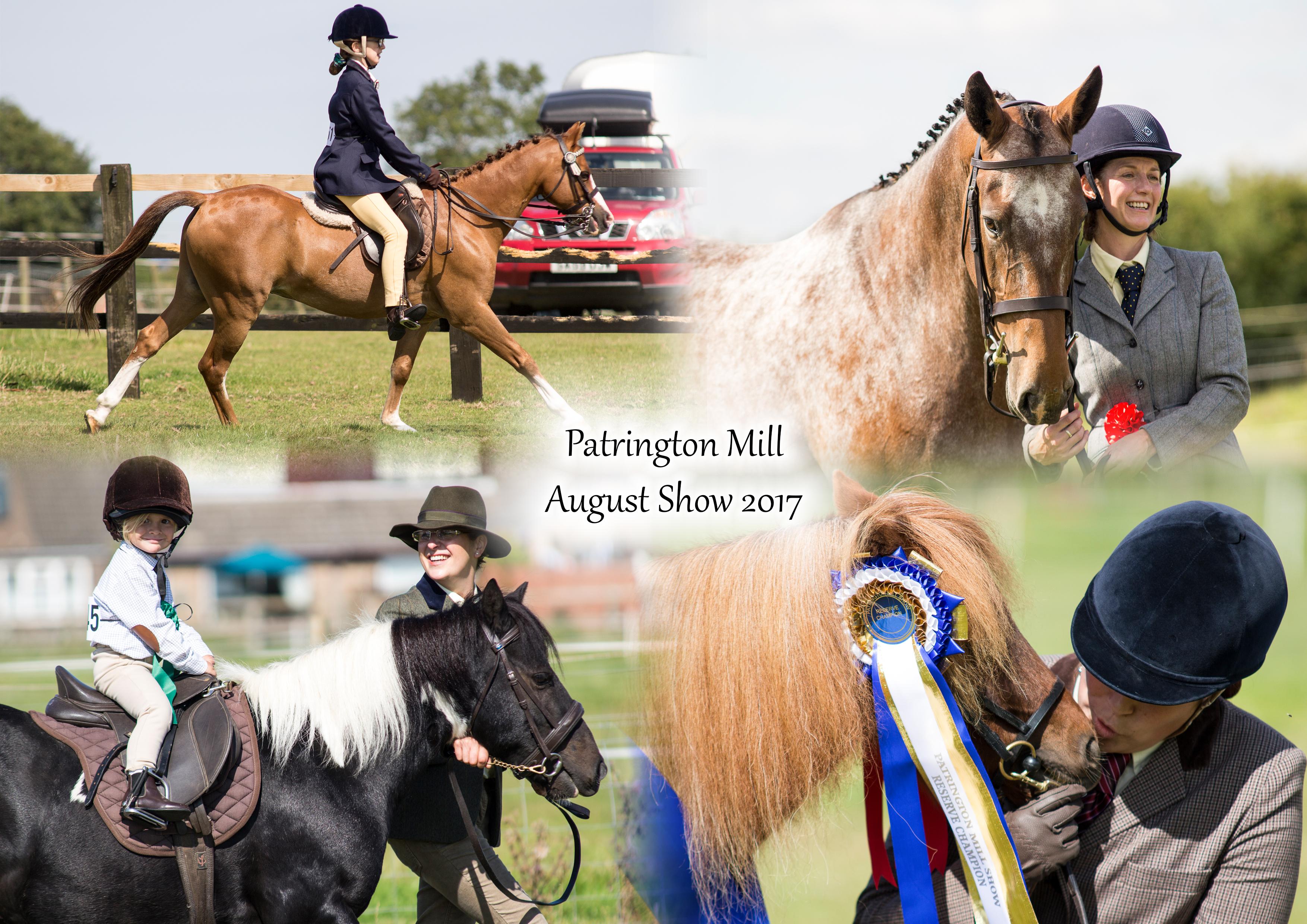 Patrington Mill Summer Shows- August