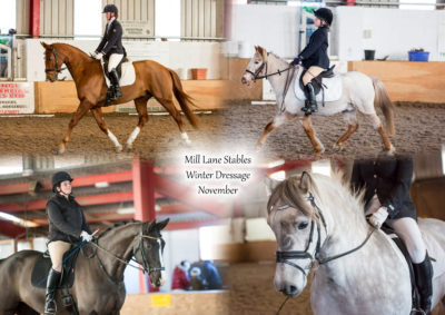 Mill Lane Stables Dresage – November