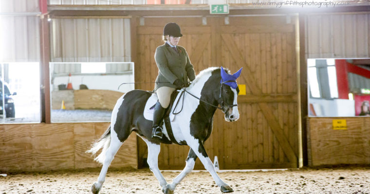 Mill Lane Dressage- November 12th 2017