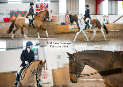 Mill Lane Stables Winter Dressage – February