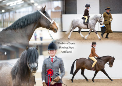 Blueberry Events April Showing Show