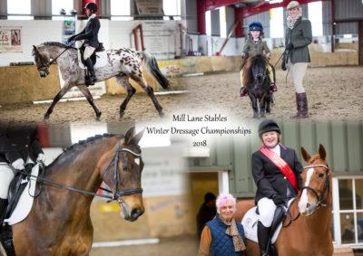 Mill Lane Winter Series Dressage Championship