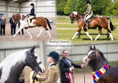 Showing Coloureds Ribbons & Dreams 2018