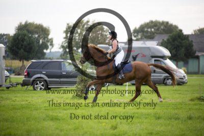 Class 11: Open Horse