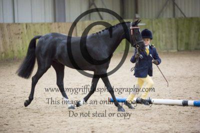 Class 5: Pony