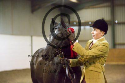 Class 3- Inhand Pony