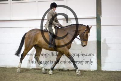 Class 15- Novice Horse