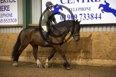 Class 18- Ridden Horse & Class 19- Ridden Hunter
