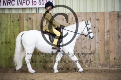 Class 17: Ridden Pony