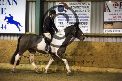 Class 19: Ridden Gelding/Stallion