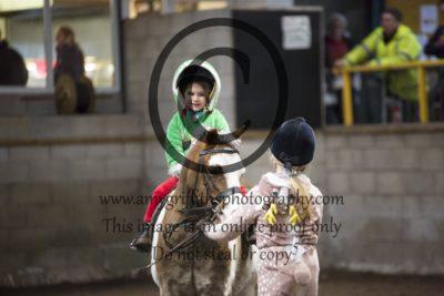 Novice 4: Bonny Pony
