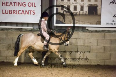 Class 28:Riding Club Horse/Pony