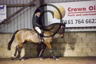 Class 35: Show Pony