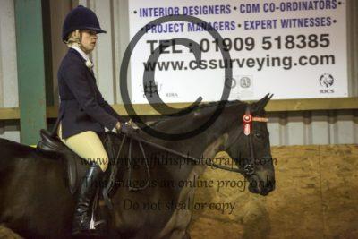 Class 14: Novice Horse