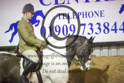 Class 16: Ridden Horse