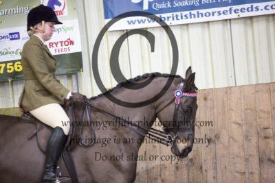Class 19: Ridden Horse