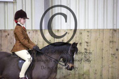 Class 20: Ridden Pony