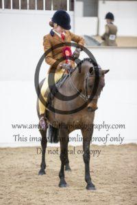 Class 19: Show Hunter Ponies