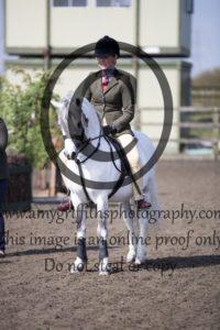 Class 4: Ponies not exceeding 122cms