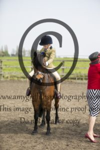 Class 9: Ponies not exceeding 128cm