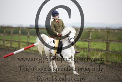 Class 12: Novice Ponies not exceeding 122cm