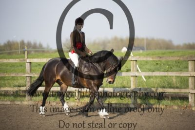 Class 20: Intermediate Ponies exceeding 143cm