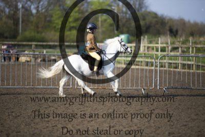 Class 17: Intermediate Ponies 122-133cm