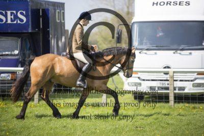 Class 59: Novice Pony