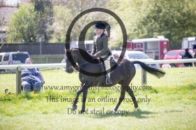 Class 65: Show Hunter Pony