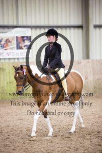 Class 48: Mixed Height Novice Show Pony