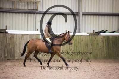 Class 53: Mixed Height Open Show Hunter Pony